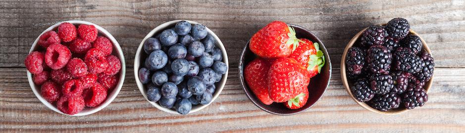 Dietitian bowls of berries